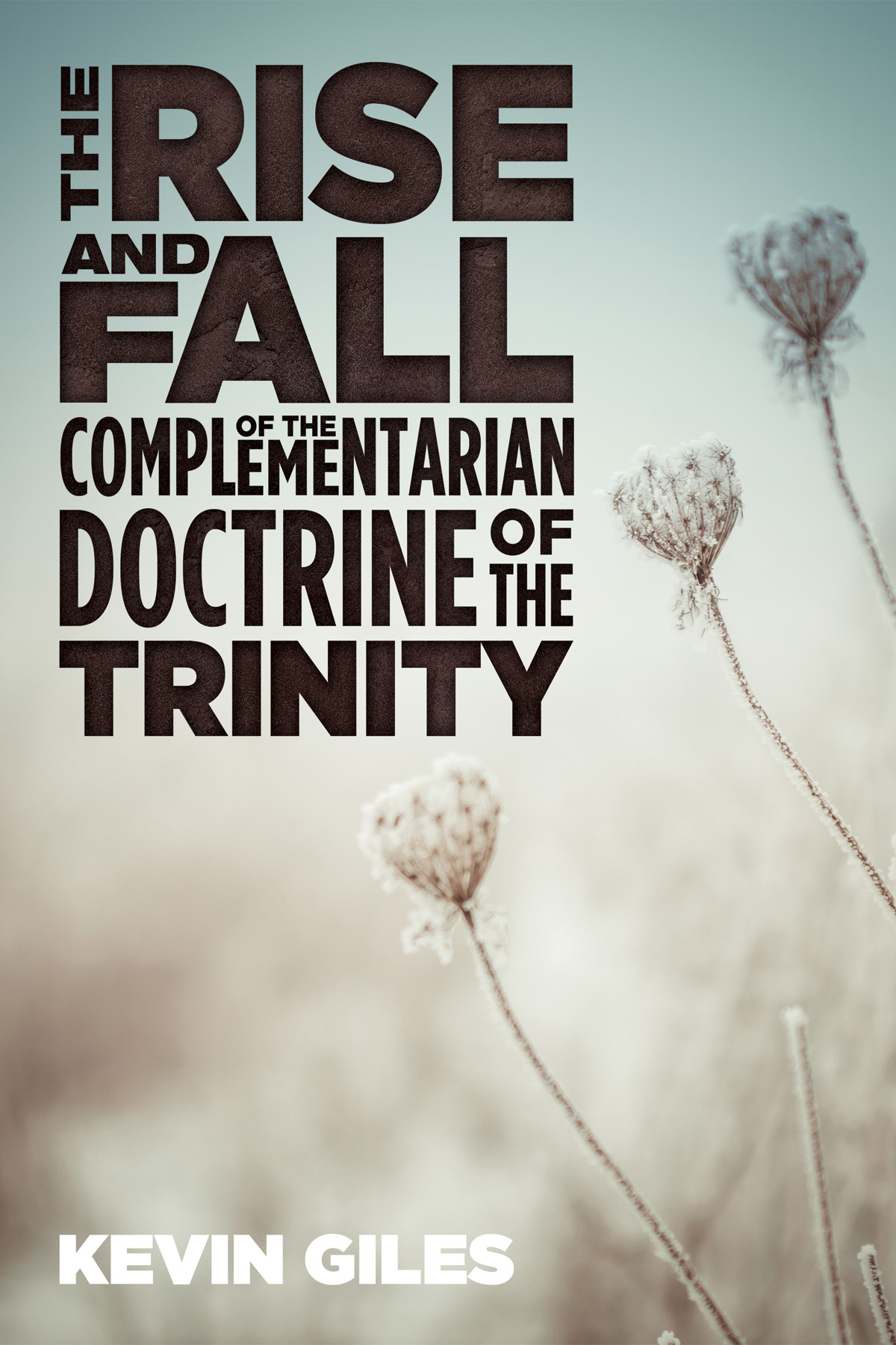Rise and Fall of Complementarian Doctrine of Trinity