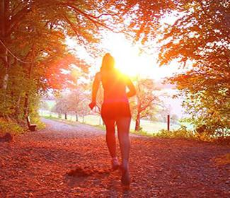 The back of a woman as she runs a trail in the woods, the sun is rising in the background
