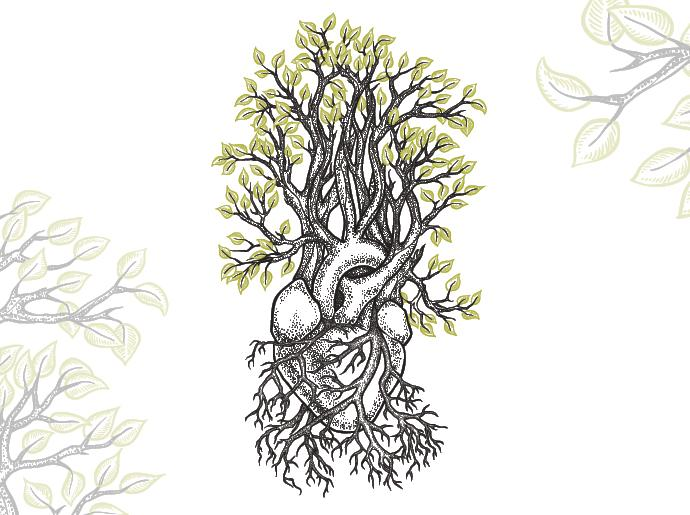 Illustration of a tree with a heart shape in the roots